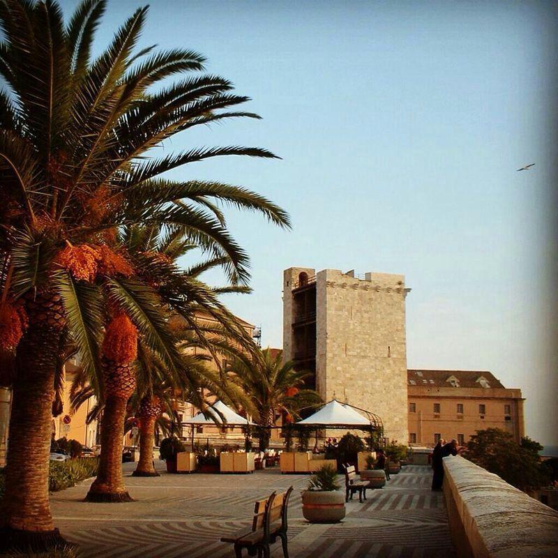 Torre Elefante vista dal bastione di S.Croce