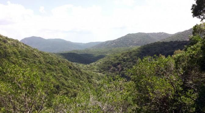 Escursione a Bidda e Mores di Gutturu Mannu, domenica 3 Maggio 2015